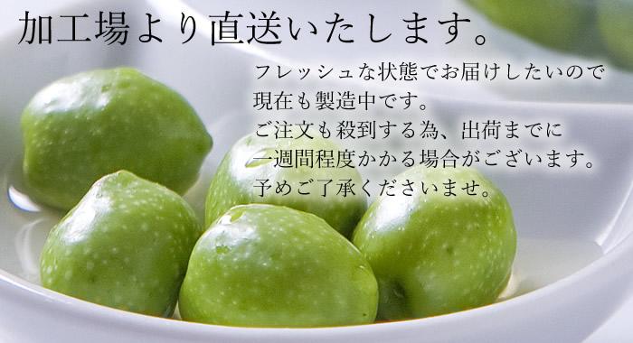 小豆島産 オリーブ新漬 新漬 新漬け オリーブ 塩漬け 塩漬